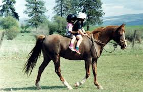 horse and kids.jpg