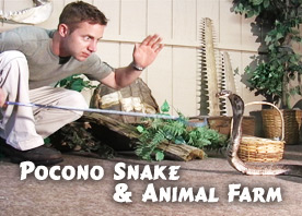 Pocono Snakes and Animal Farm